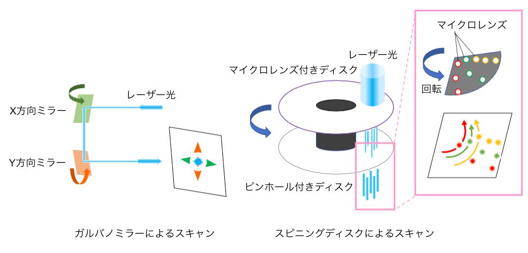 レーザー顕微鏡の原理