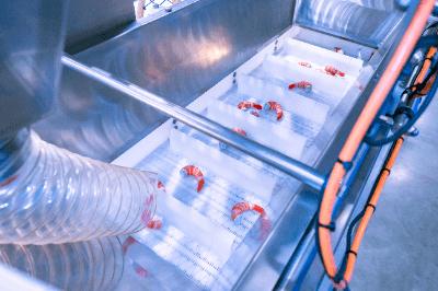 急速凍結機